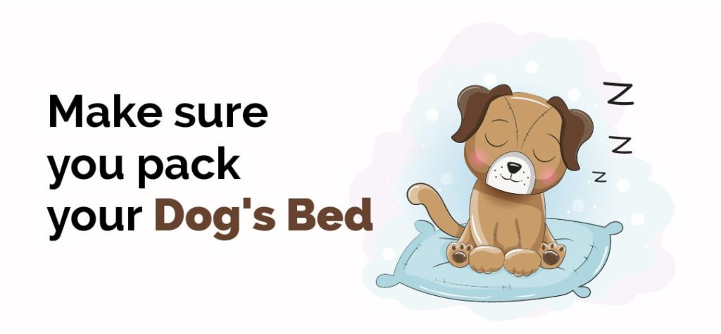 make sure you pack your dogs bed