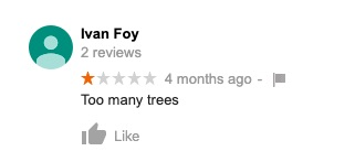 Too many trees review