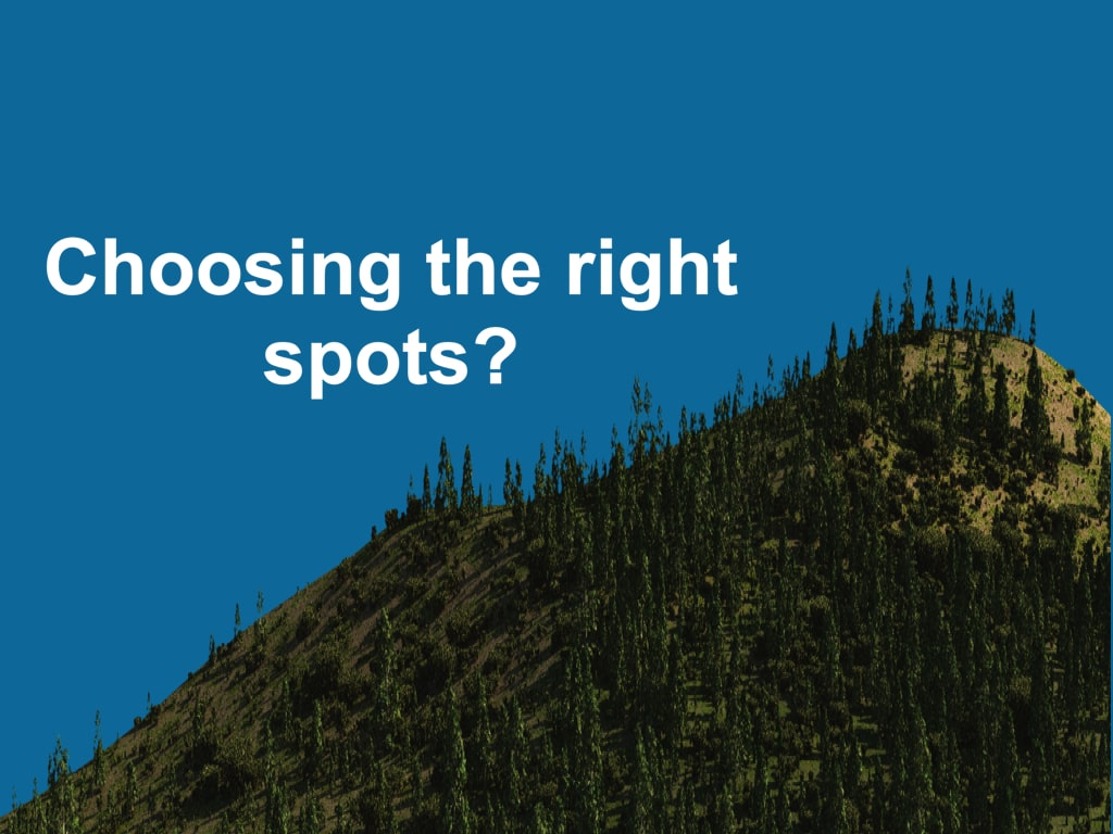 choosing the right spots